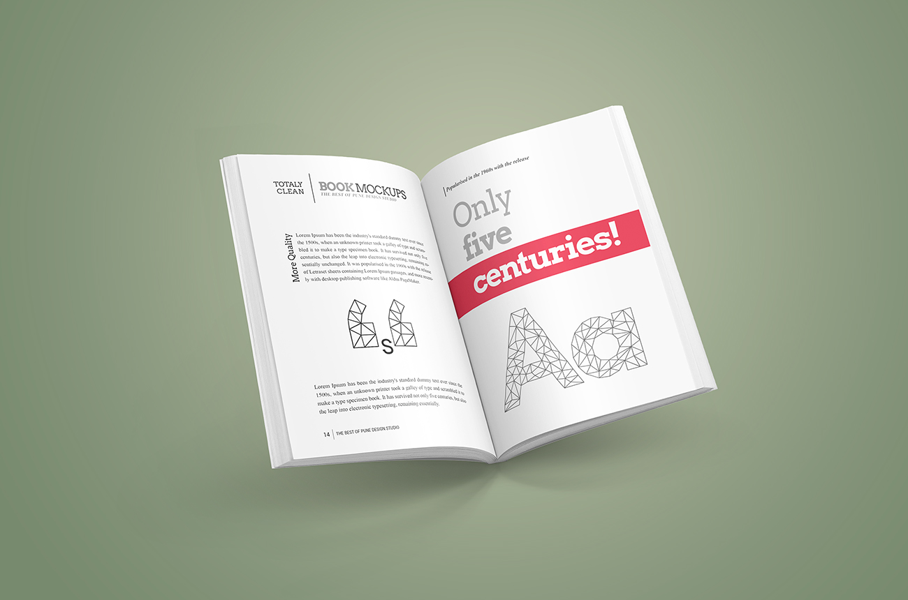 Book-mockup-softcover-02