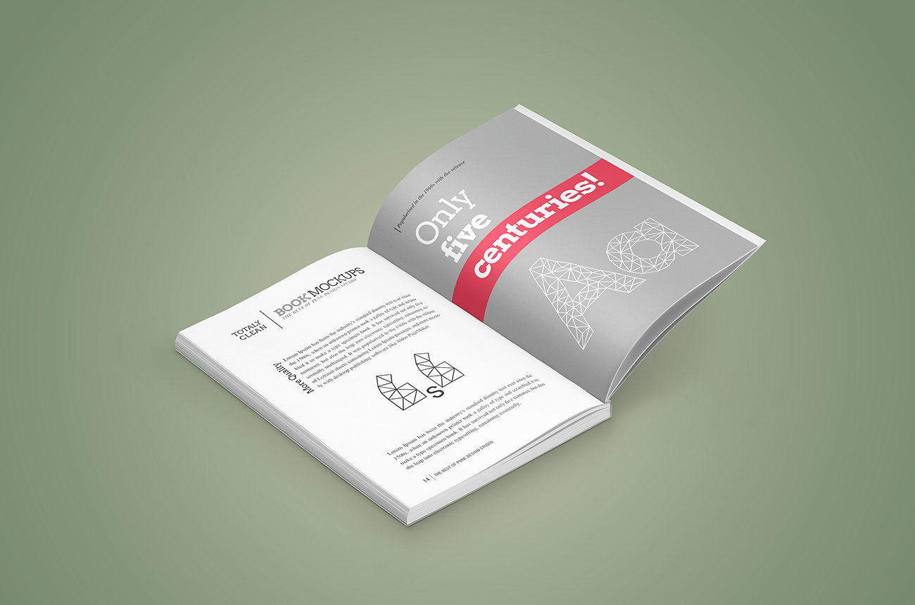 Book-mockup-softcover-04